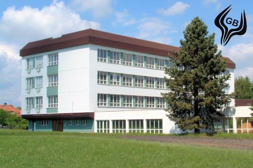 Gymnázium, Blovice